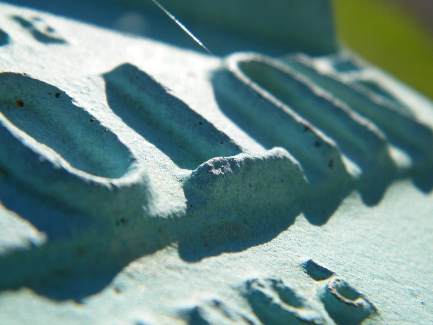 Sunny Macro Cement Letters
