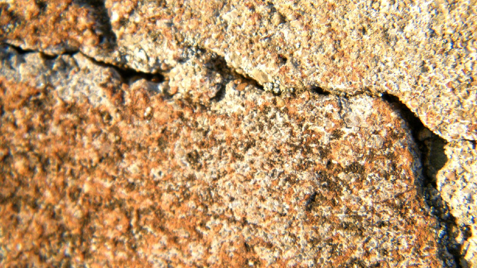 Macro Cracked Wall