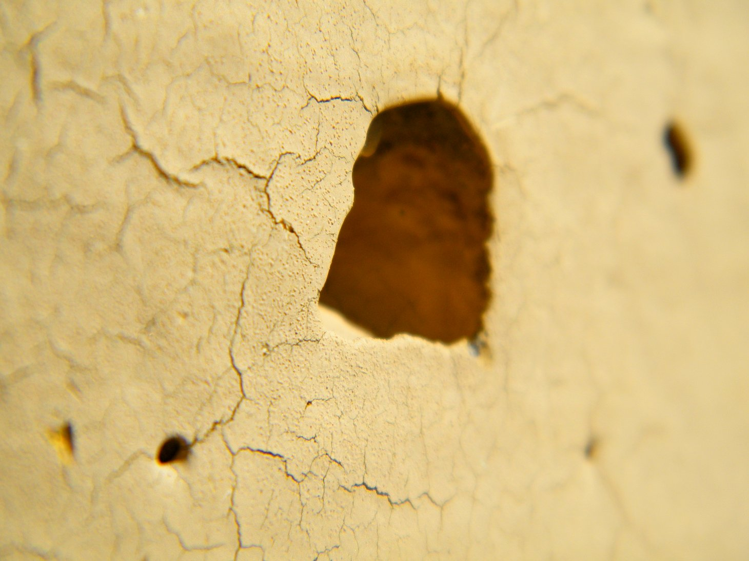Macro Yellow Cracked Wall with Hole