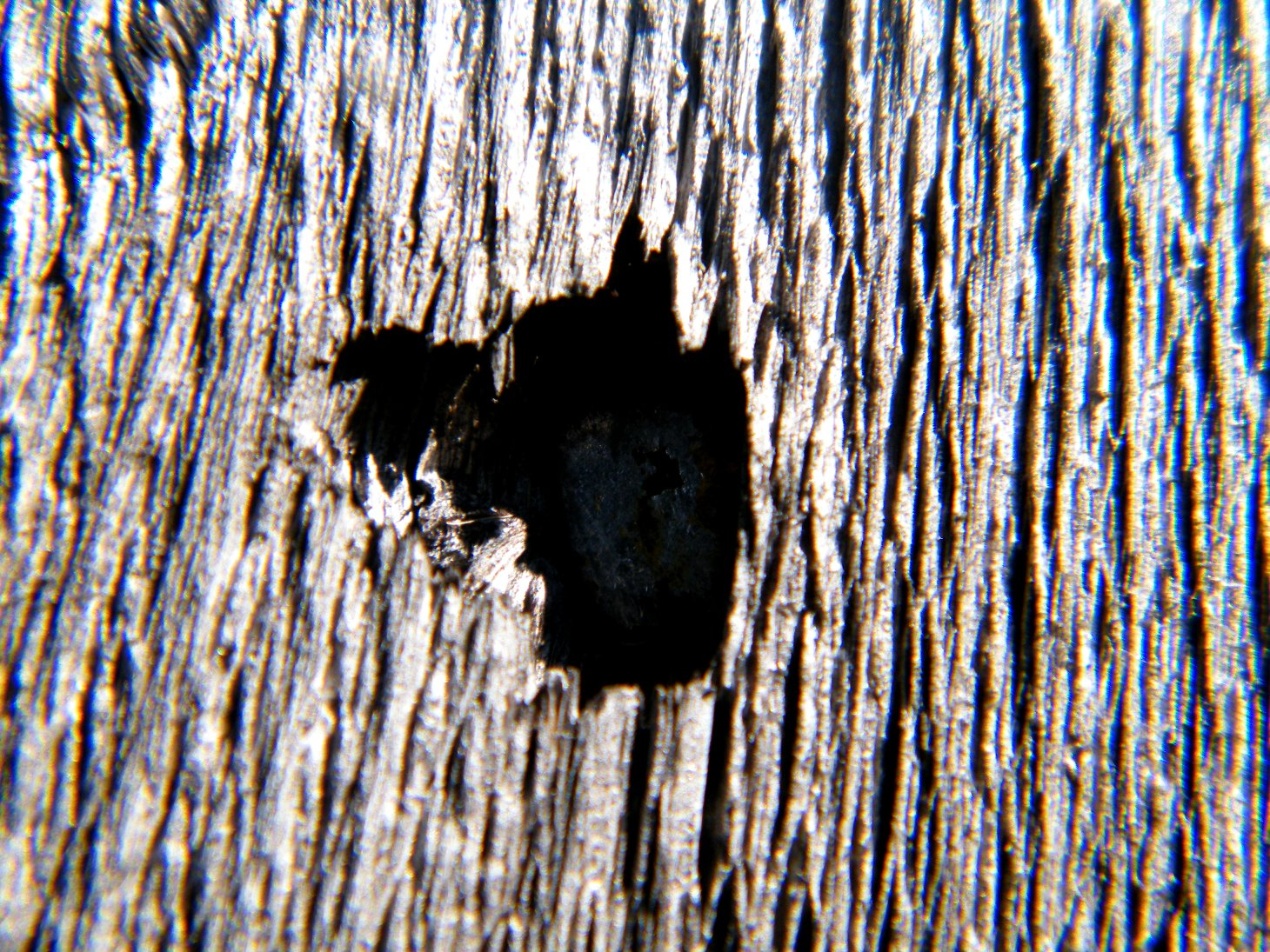 Macro Wooden Wall with Hole