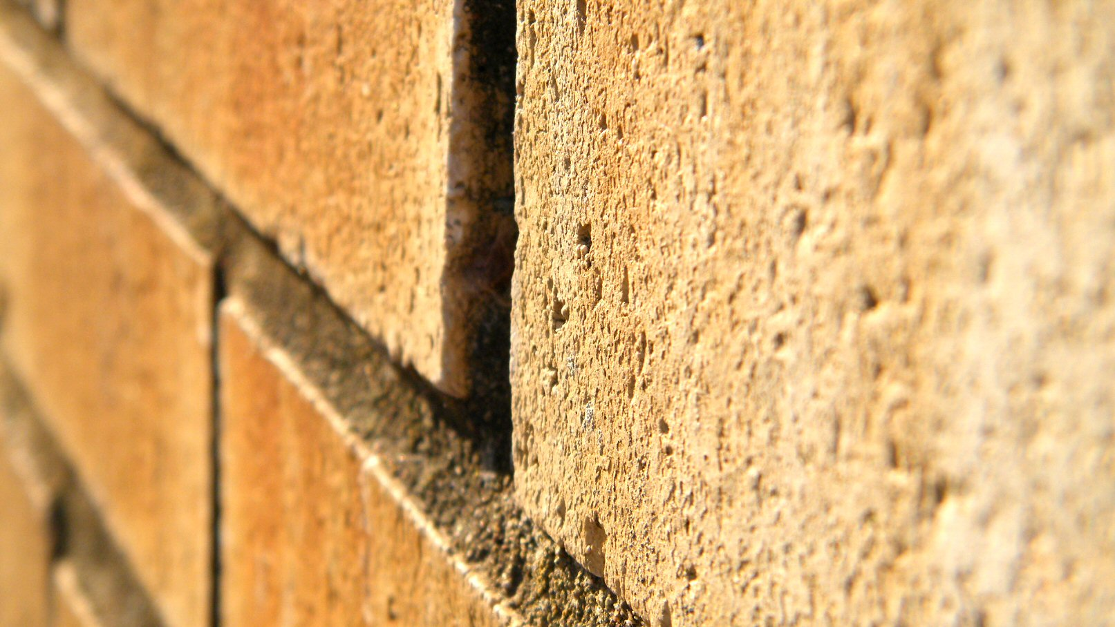 Macro Red Brick Wall