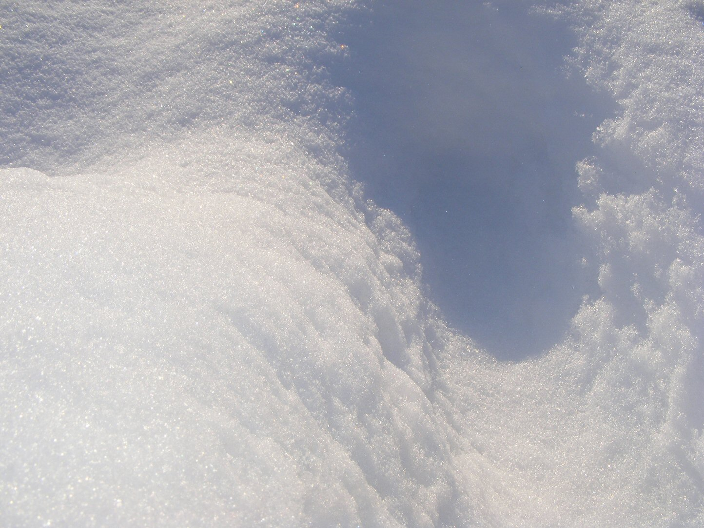 Footprint in the Snow