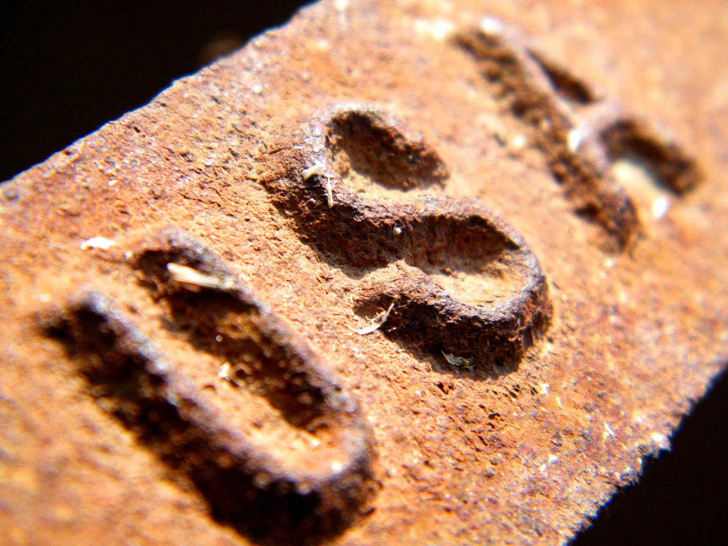 Macro Rusty USA Etching