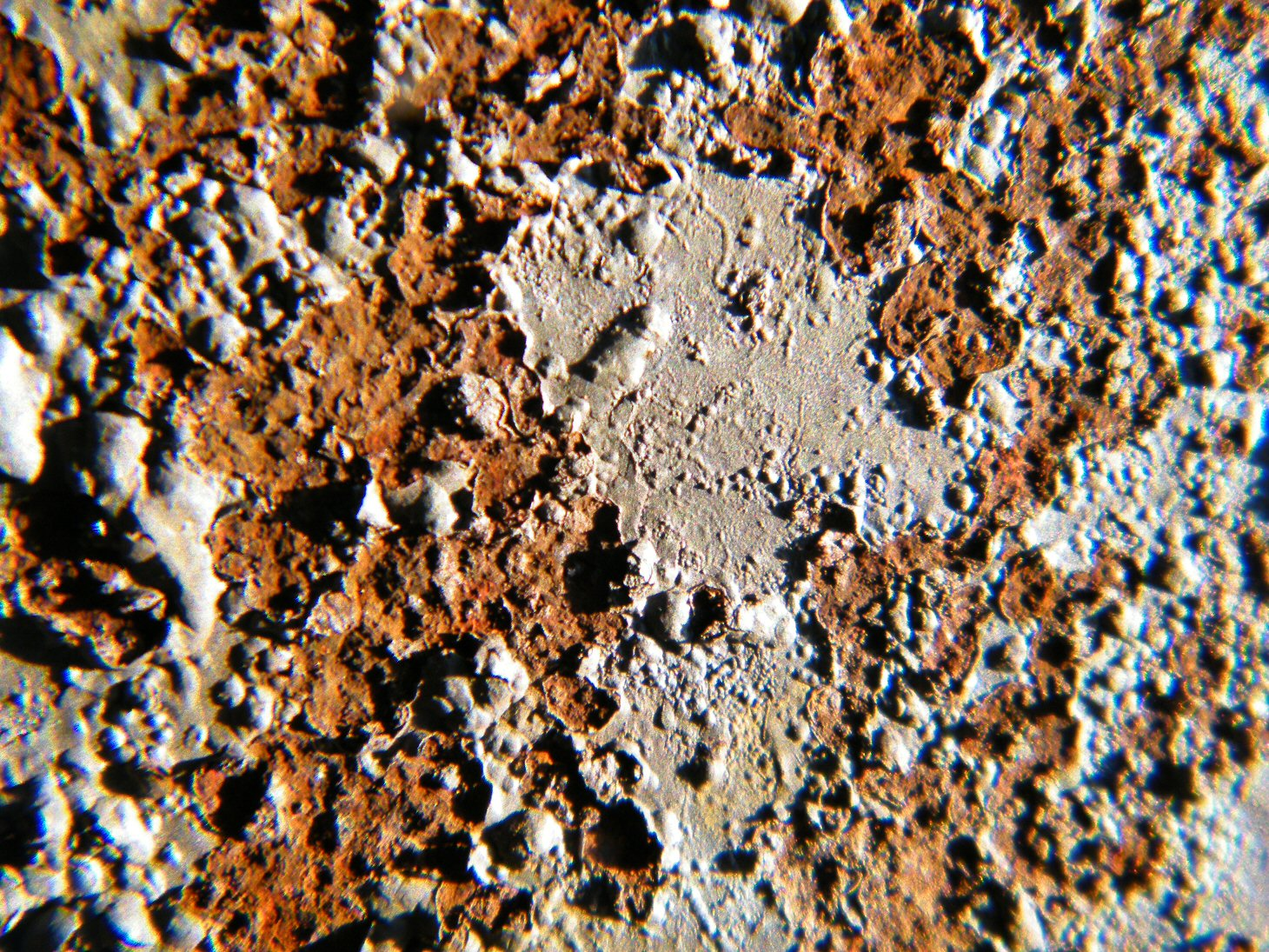 Macro Rusty Bubbly Paint