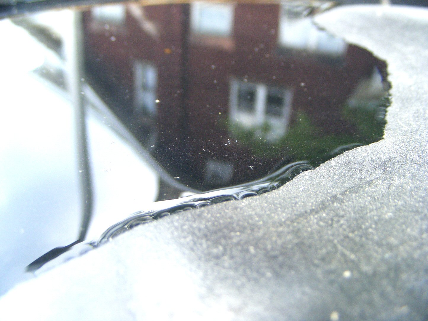 Puddle with a Blurry House in the Background