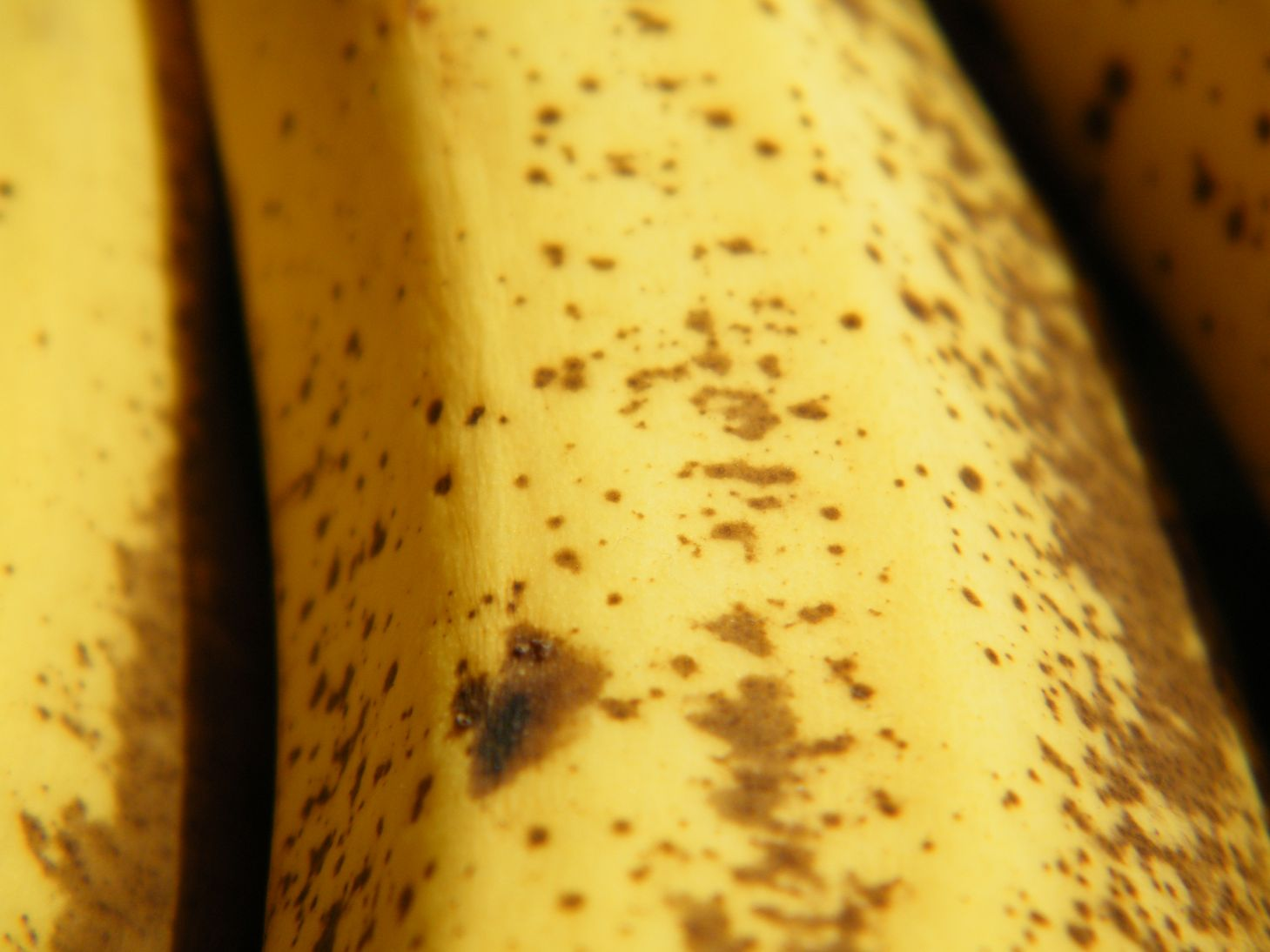 Macro Banana Skin with Brown Freckles